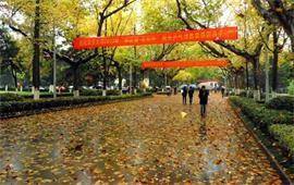 南京大学中央大道