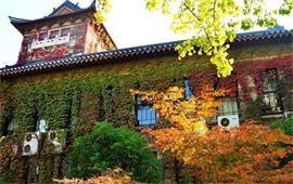 南京大学美景